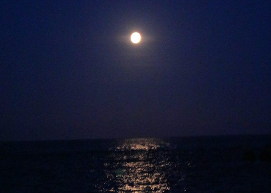 辻井 伸行 月光